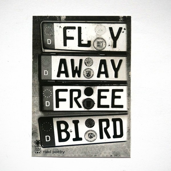 "MaraCooya: ""Fly Away Free Bird"" - Sticker at SALZIG Berlin"